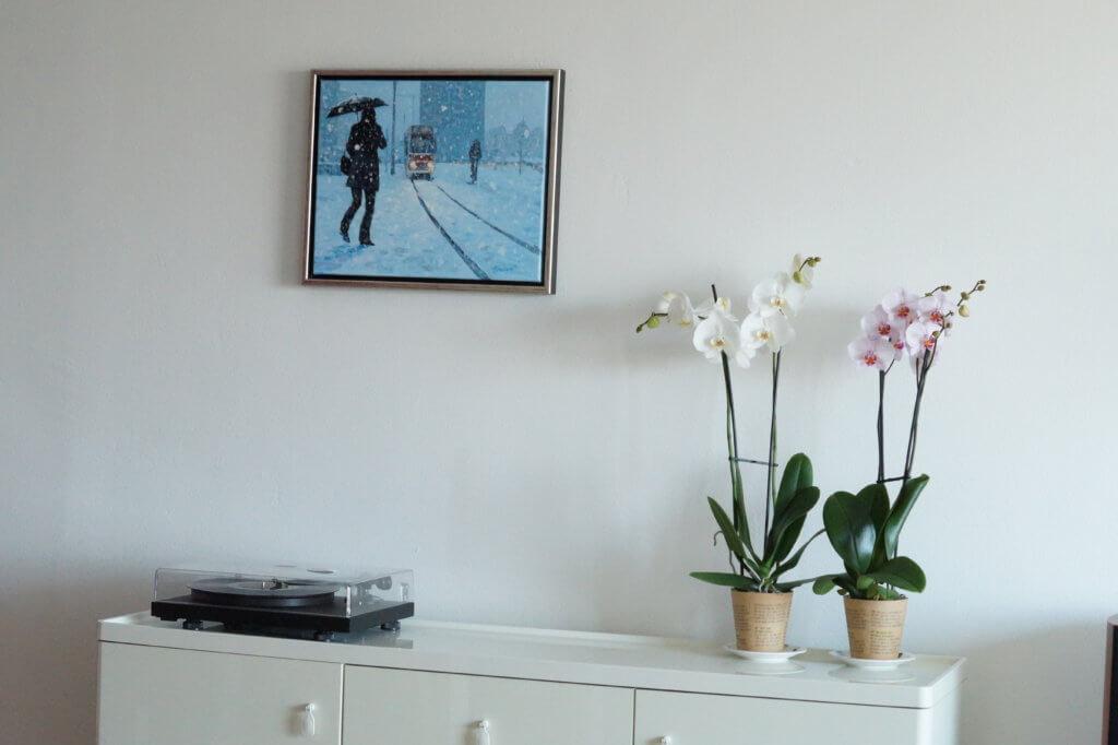 Orchideeën in huis